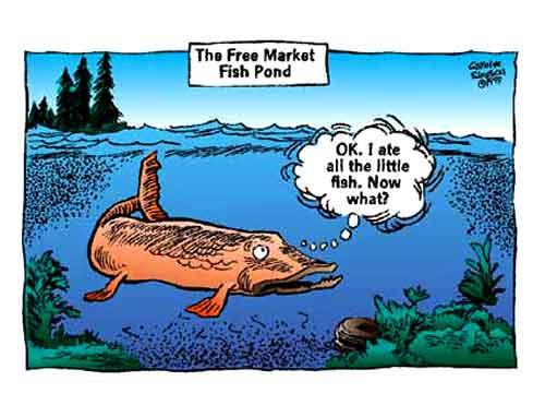 cs_freemarket_fishpond